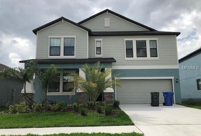 13911 Snowy Plover Lane Riverview FL 33579