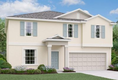 10252 Strawberry Tetra Drive Riverview FL 33578