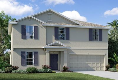 14149 Covert Green Place Riverview FL 33579