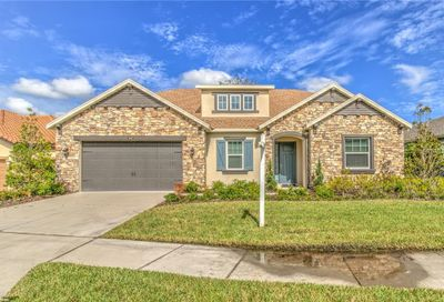 13318 Fawn Lily Drive Riverview FL 33579