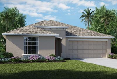 10104 Crested Fringe Drive Riverview FL 33578