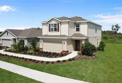 14223 Poke Ridge Drive Riverview FL 33579