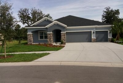17707 Bright Wheat Drive Lithia FL 33547