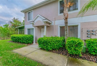18117 Paradise Point Drive Tampa FL 33647