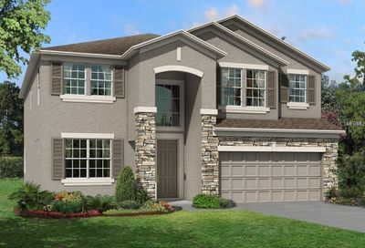 31272 Palm Song Place Wesley Chapel FL 33543