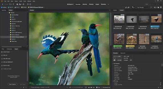 Adobe Bridge CC 2021 11.1.0.175 Crack + Key Free