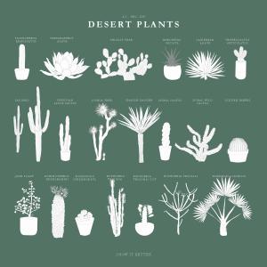 Desert Plants Pack