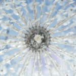 wedding chandelier spain