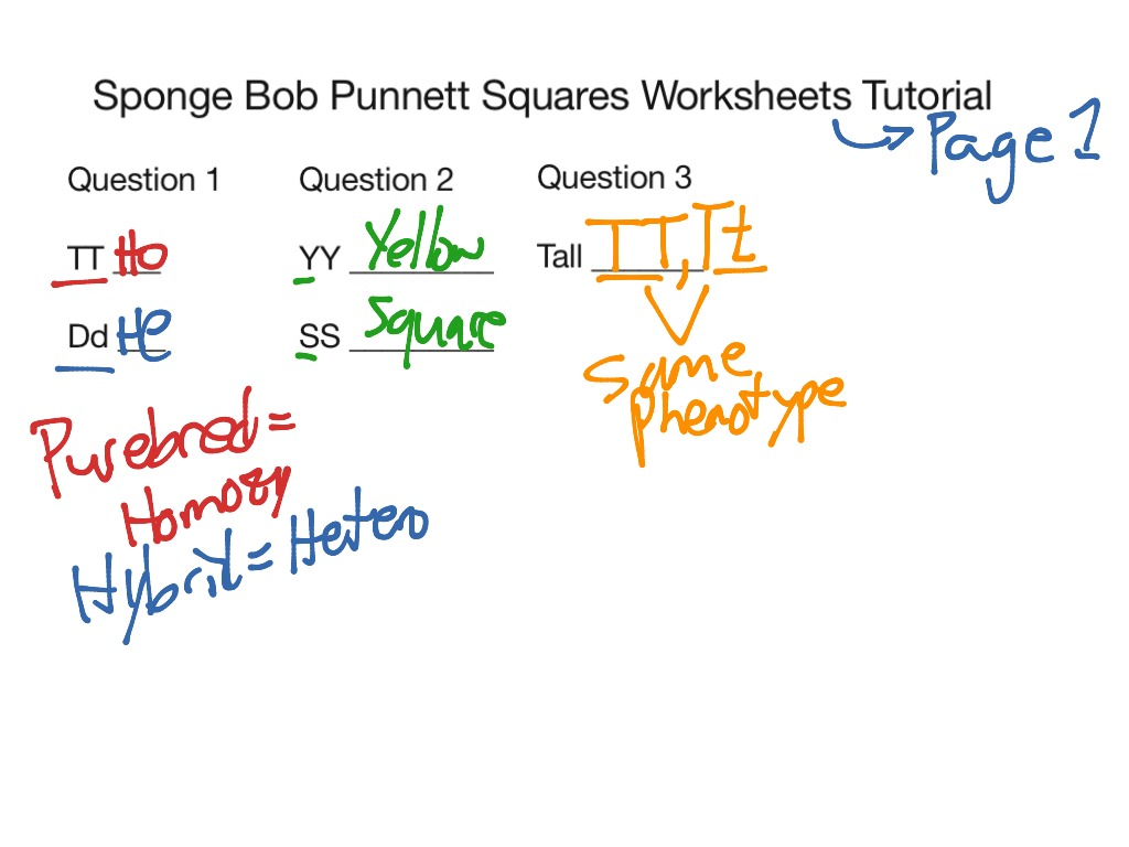 Sponge Bob Worksheet Pages 1 And 2 Tutorial