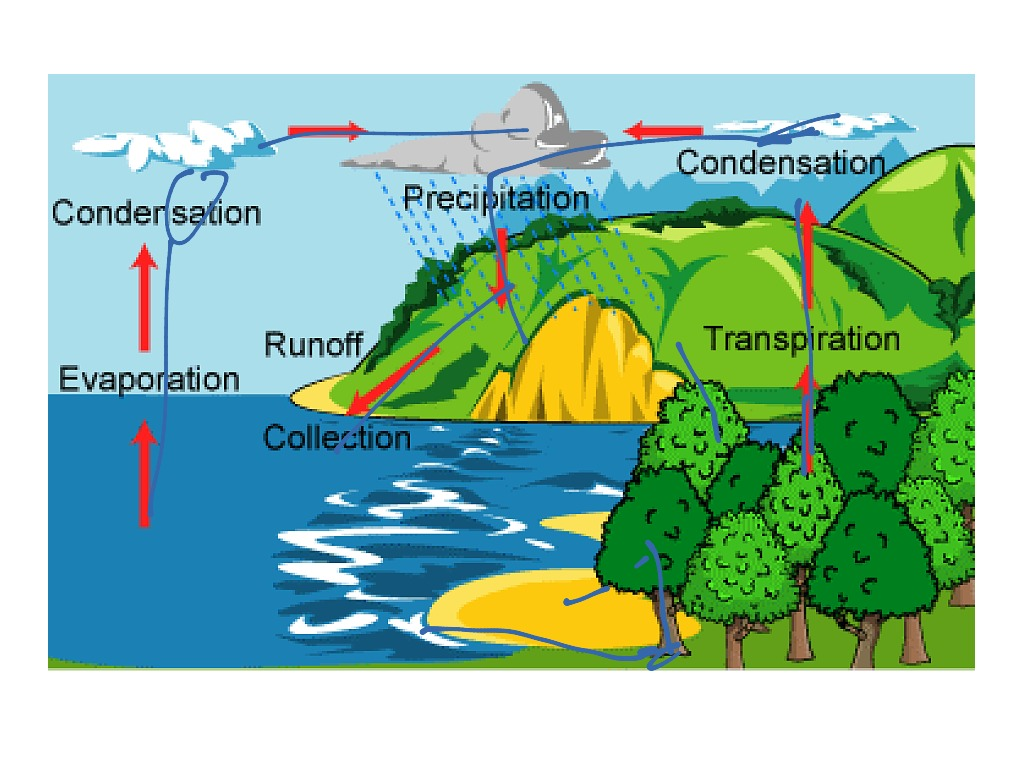 Water Cycle2 0
