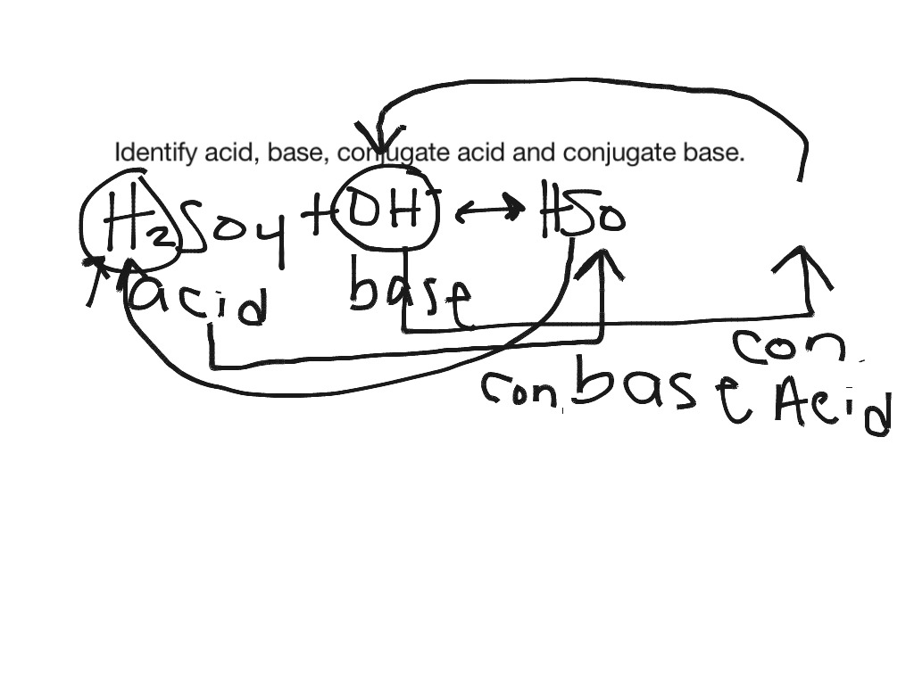 Acid Base Conjugate Acid Conjugate Base Copy Copy