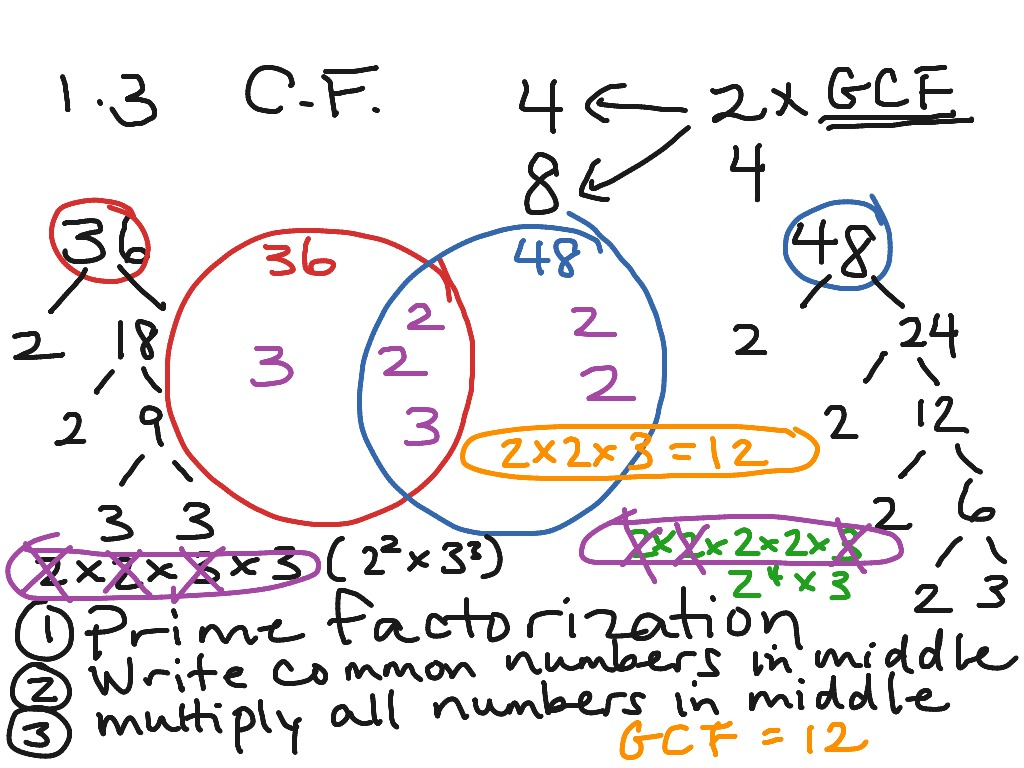 1 3 Lesson On Venn Diagram And Gcf