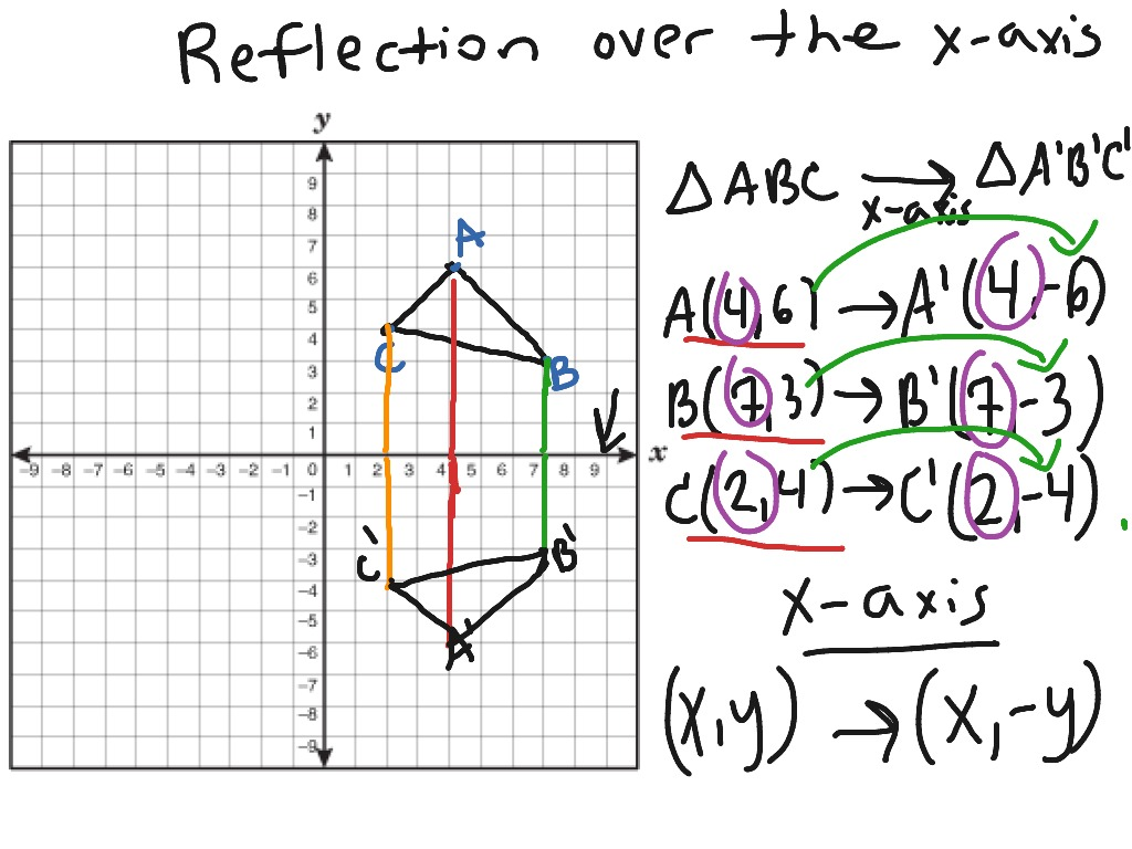 Reflection In The X Axis
