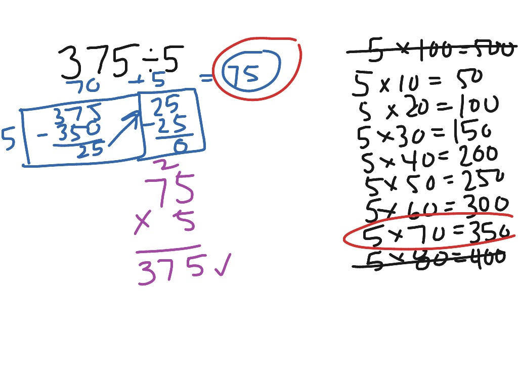 Division Using An Area Model
