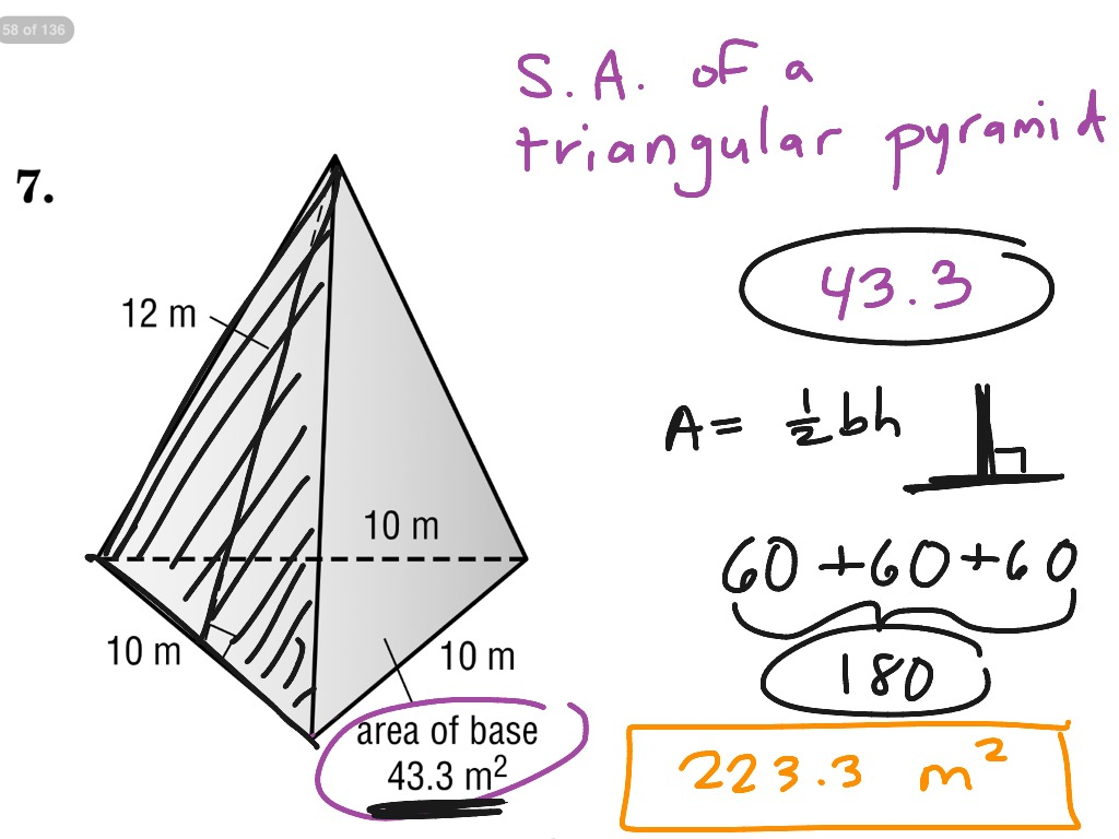 Worksheet Surface Area Of A Pyramid Worksheet Worksheet