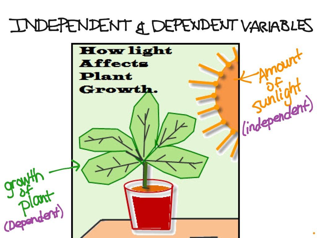 Independent Dependent Variables