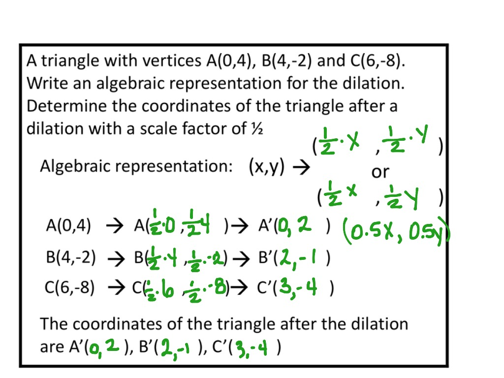 Printables Of Algebraic Representations Of Dilations Worksheet