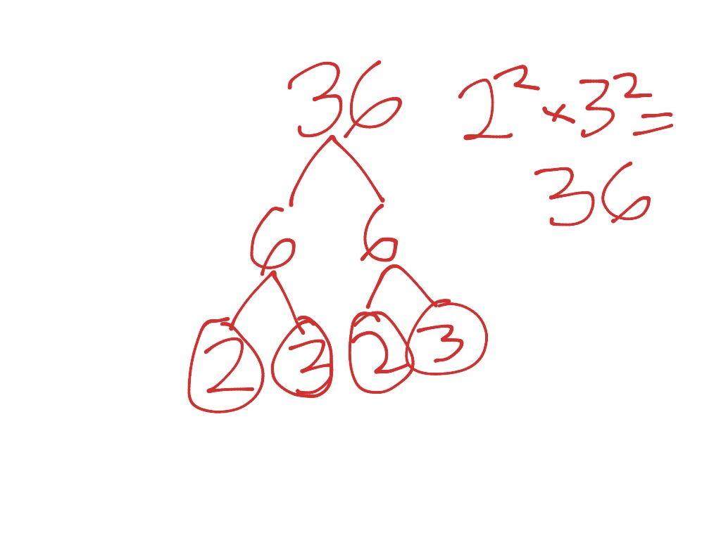 Math Group Prime Factorization