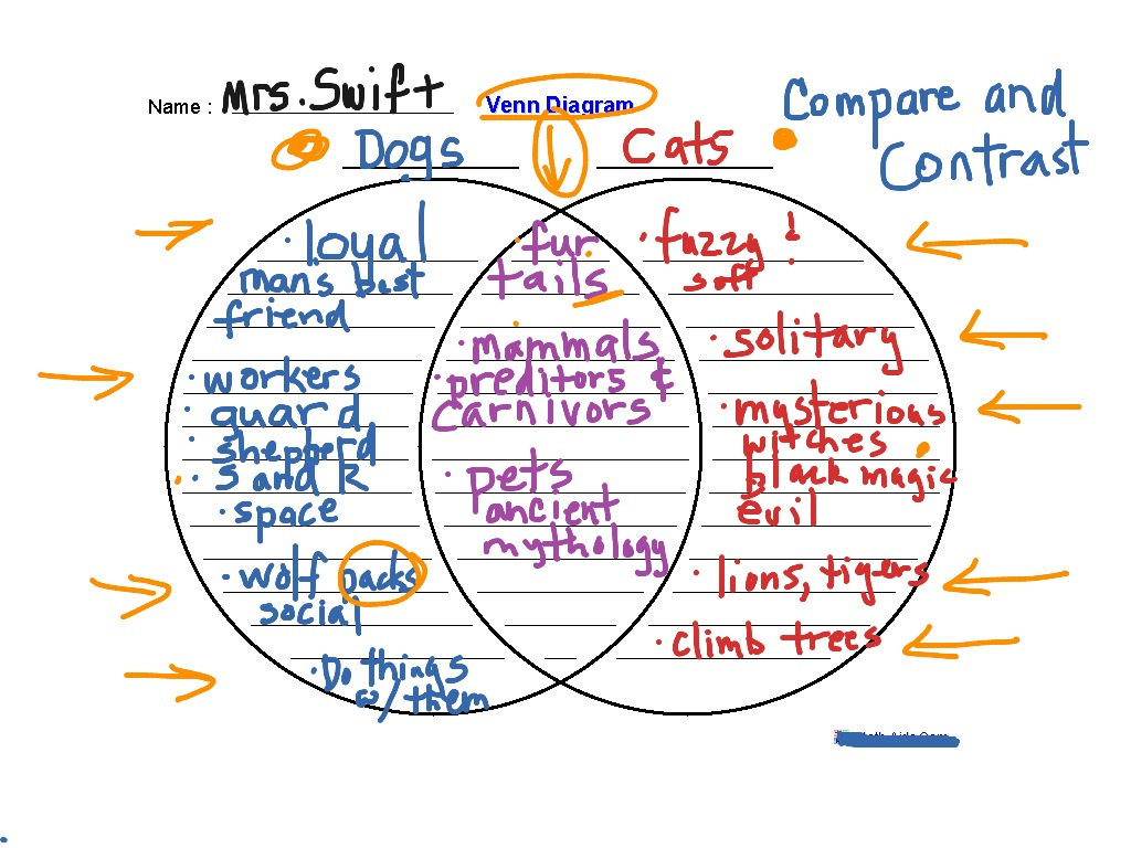 Compare And Contrast W Venn Diagram