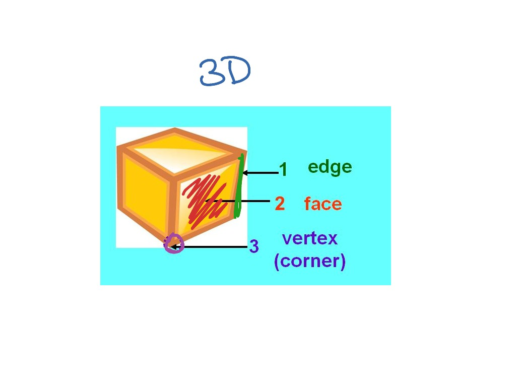 Edges Faces And Vertices