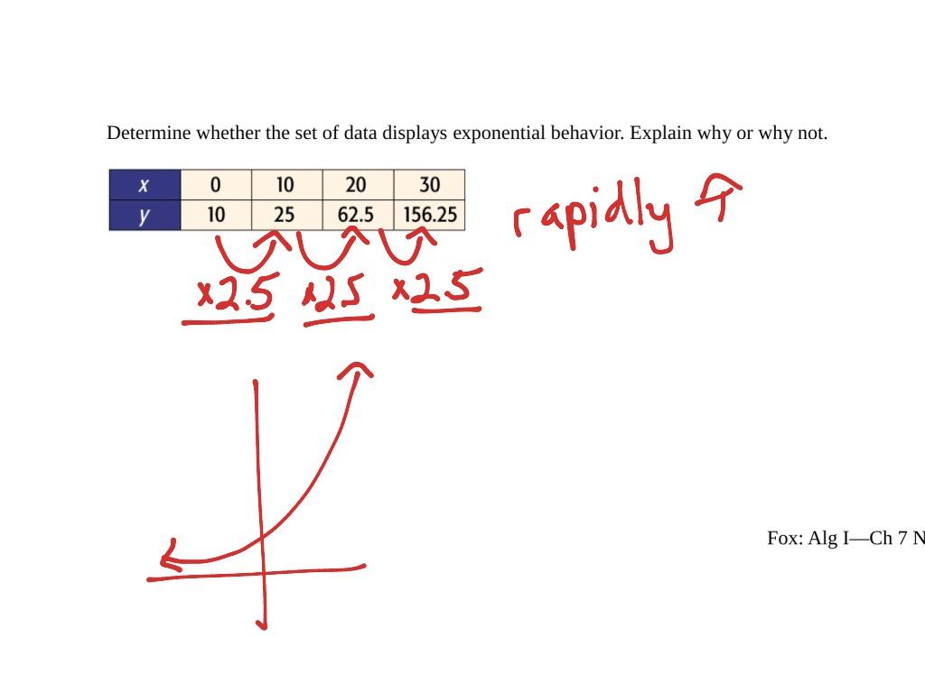 Algebra 7 5 Exponential Functions