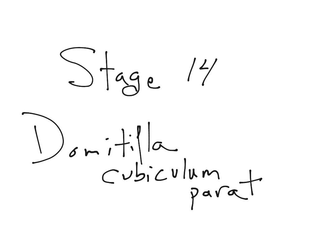 Stage 14 Reading Domitilla Cubiculum Parat