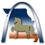 Show Me Morgan Horse Club
