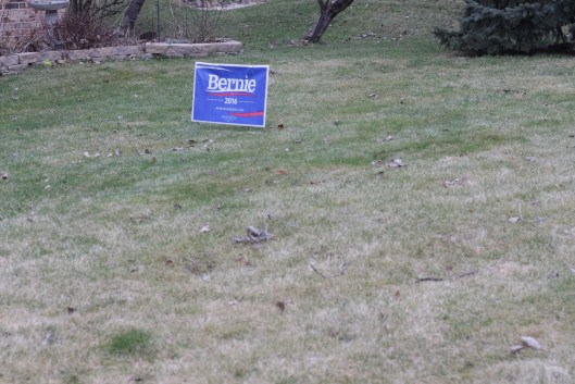 A Bernie Sanders yard sign - out months before the primary.