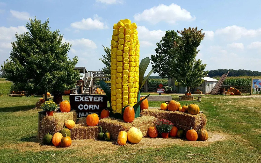 Exeter Corn Maze: Nonstop Fall Family Fun