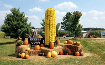 Exeter Corn Maze: Nonstop Fall Family Fun