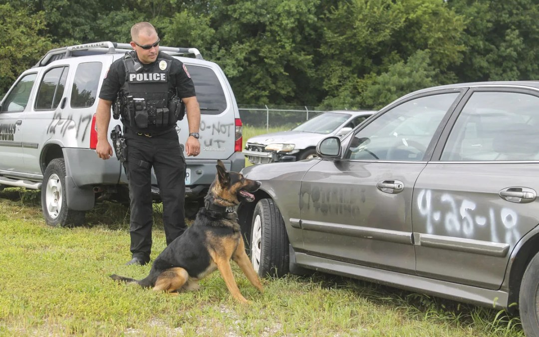 The JPD K-9 Unit: A Look Inside the Life of Joplin's Police Dogs