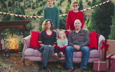 A Return to Simplicity : Create family memories at Ozark Valley Christmas Tree Farm