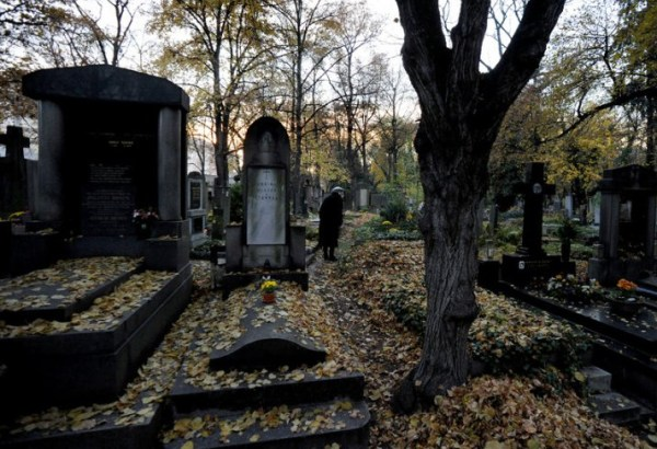 Olsanske Hrbitovy autumn