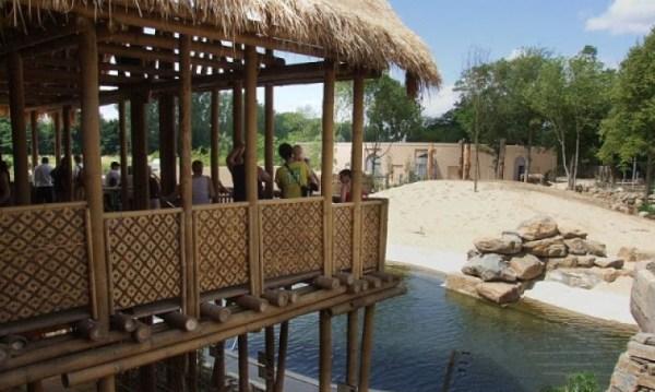 Planckendael Zoo lake