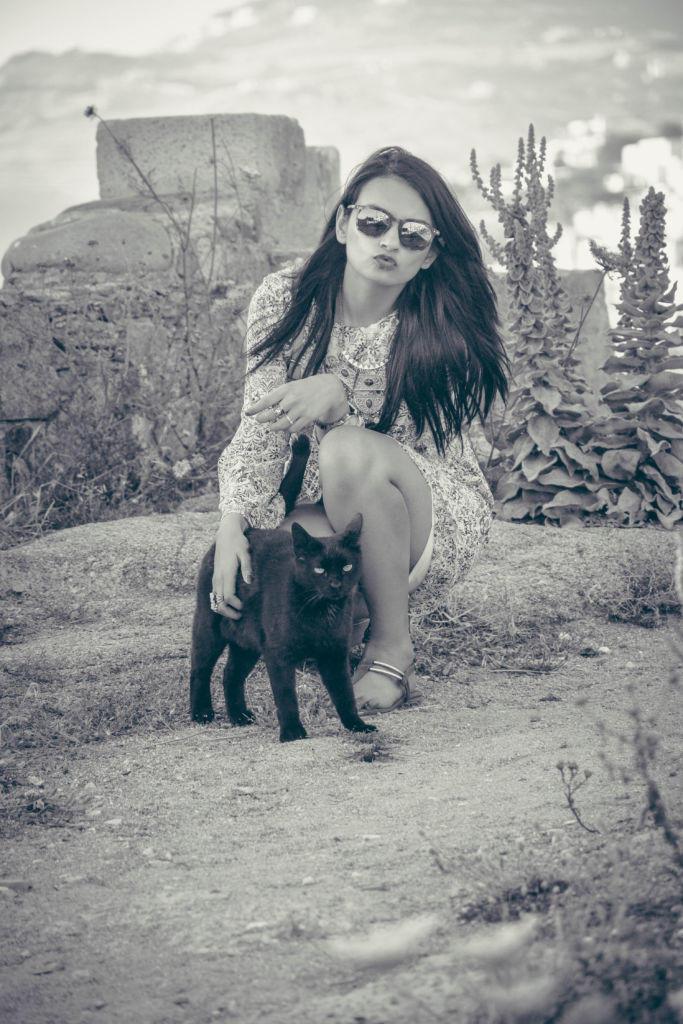 cats in mykonos