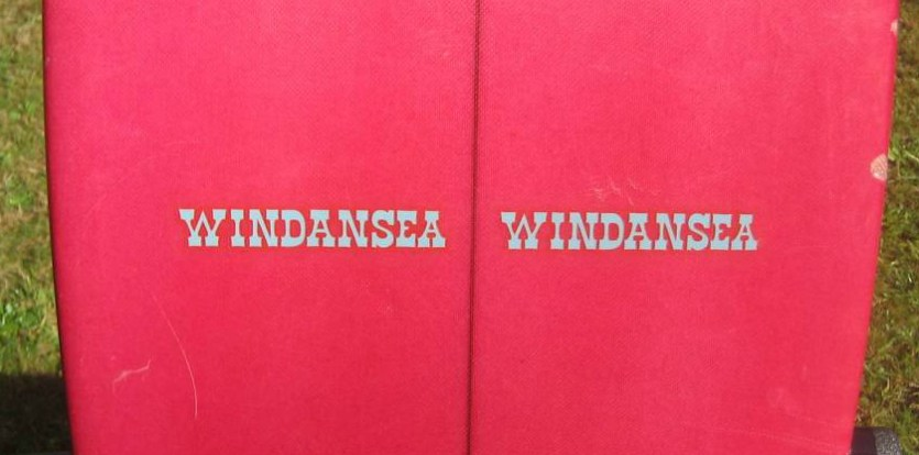 Windansea Single Fin 1970s Logo