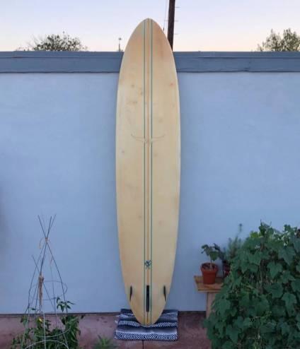 Skip Frye Egg Longboard 1