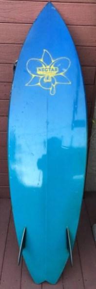 Nectar Surfboards Twin Fin