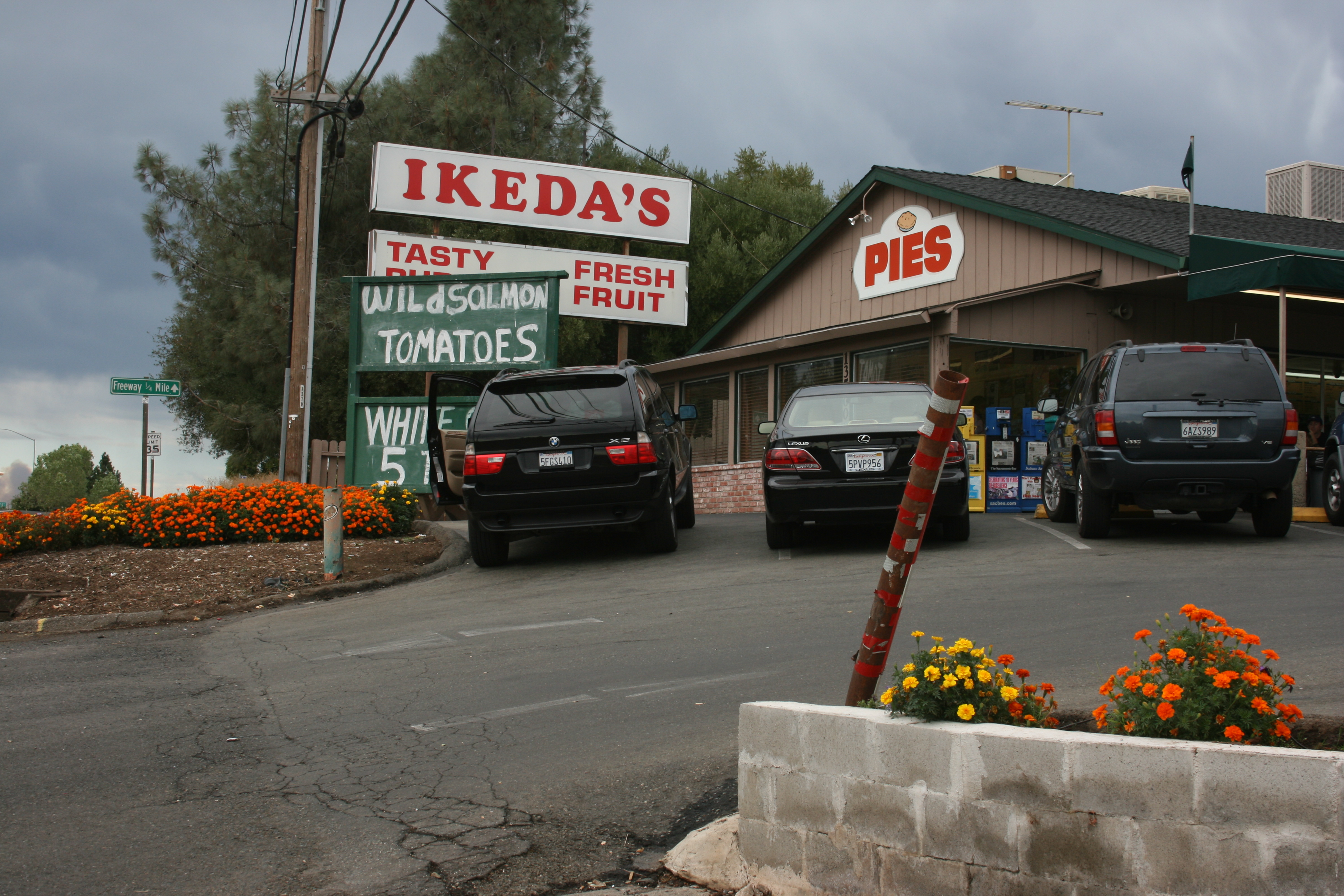 Ikeda's, now and forever.