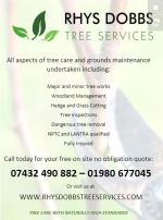 Rhys Dobbs Tree Services