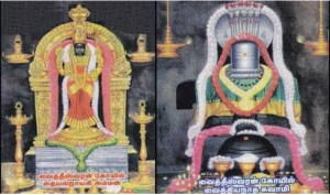 Sri Vaidyanatha Ashtakam – Powerful Shivji Hymn for Curing Diseases by Adishankara Bhagavadpada