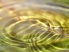 concentric circles in rippling water
