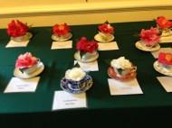 Camellias in teacups