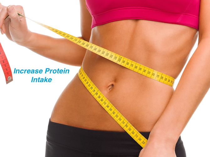 Increase Protein - Lose Weight