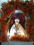 Darbar Rudrapur bapu shardha ram ji maharaj darshan