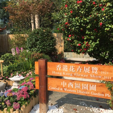 Garden plot in Chater Park, Central, on March 19, 2021. (Photos: Emily Luk)