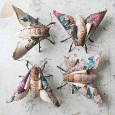 Blossom-moth-sisters-small