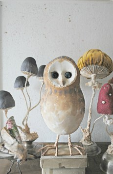 owl-and-mushrooms-small