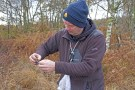 Extracting a Lesser Redpoll