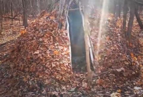 natural-shelter
